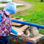 Как сшить стёганый жилет для ребёнка
